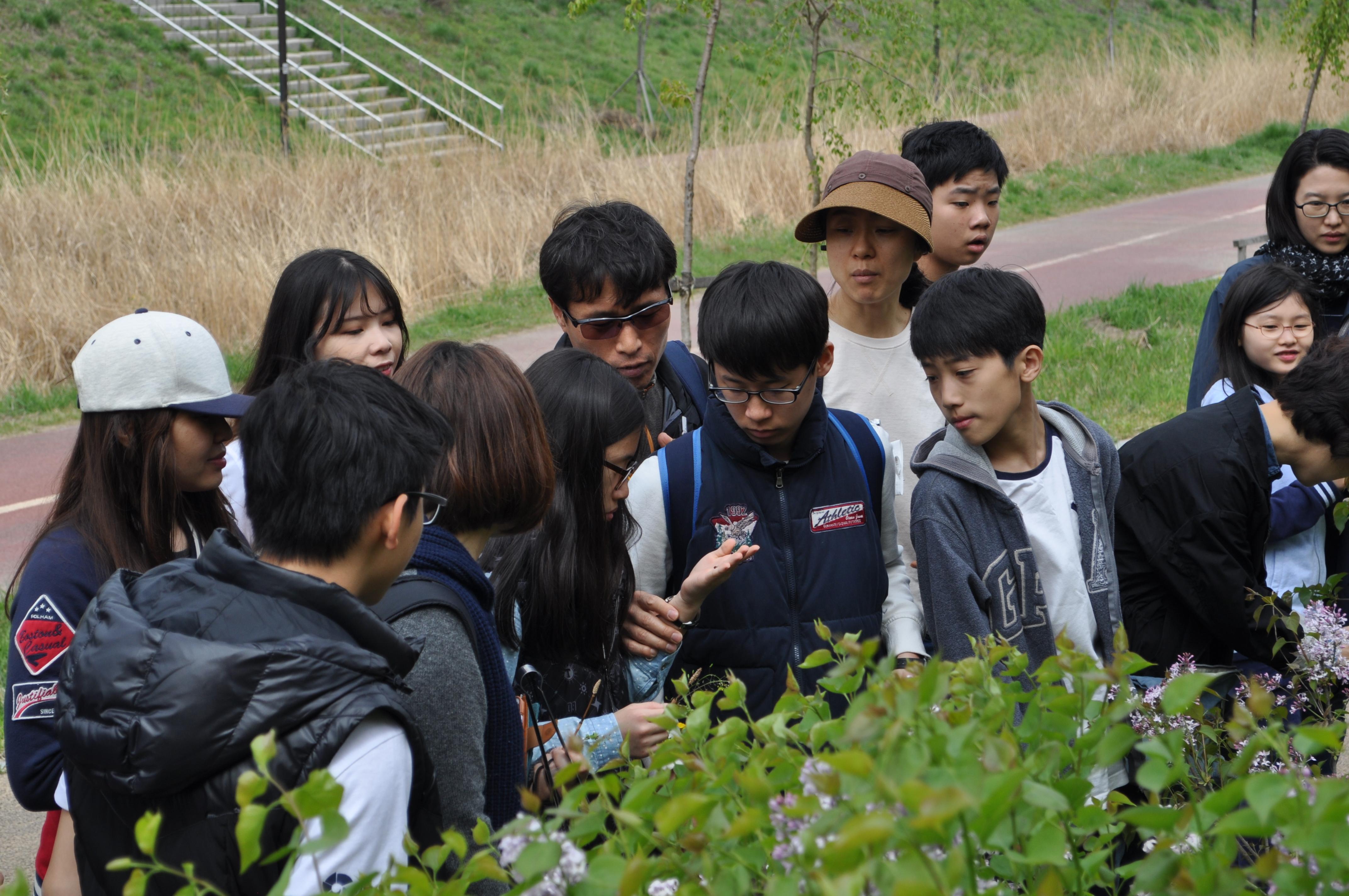 식물씨앗 관찰